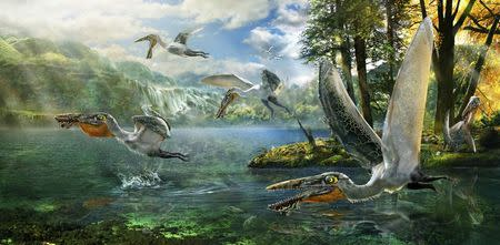 The ecological reconstruction of Ikrandraco avatar is shown in this illustration courtesy of Chuang Zhao. REUTERS/Chuang Zhao/Handout