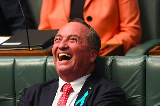 Deputy Prime Minister Barnaby Joyce's number was also said to be published. Source: AAP