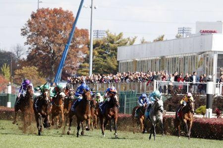 Nov 3, 2018; Louisville, KY, USA; A pack of horses run in the Maker's Mark Breeders Cup Filly & Mare Turf during the 35th Breeders Cup world championships at Churchill Downs. Mandatory Credit: Brian Spurlock-USA TODAY Sports