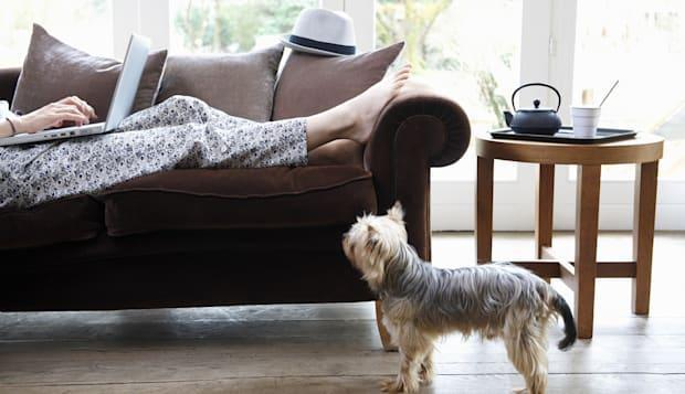 Woman working on sofa, dog at her feet