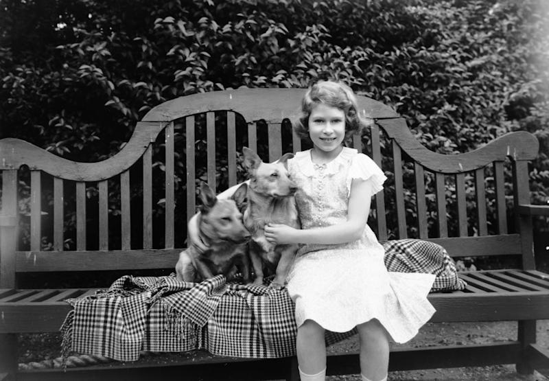 Queen Elizabeth II sitting on a garden seat with two corgis at her home on 145 Piccadilly, London, 1936.