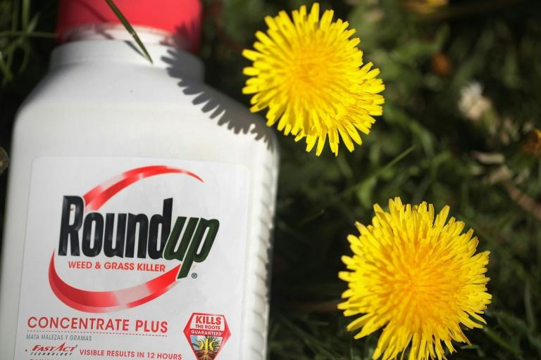 A jury concluded that it was more likely than not that Monsanto weed-killer Roundup caused non-Hodgkin's lymphoma in a California man