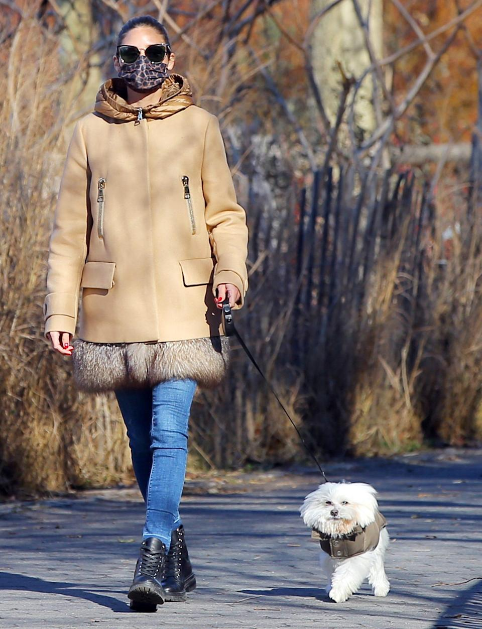 <p>Olivia Palermo and her dressed-up dog are perfectly in step on Tuesday while walking in N.Y.C.</p>
