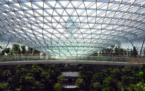 The rooftop canopy will provide a playground - Credit: changi airport