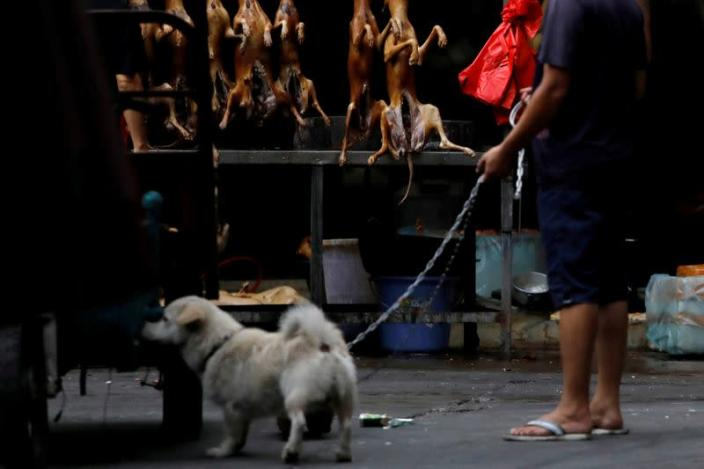 FILE PHOTO: A man walks with his pet dog as he talks to a vendor during the local dog meat festival in Yulin