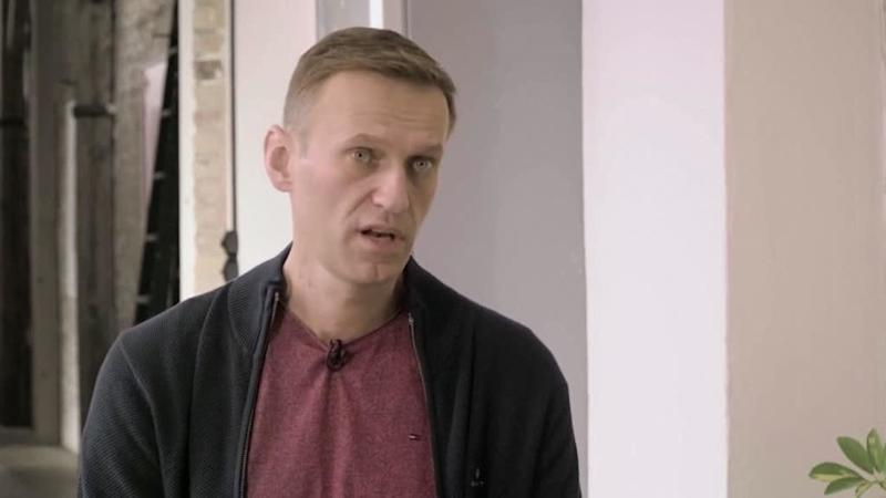 Chemical weapons watchdog confirms banned nerve agent Novichok in Navalny's blood