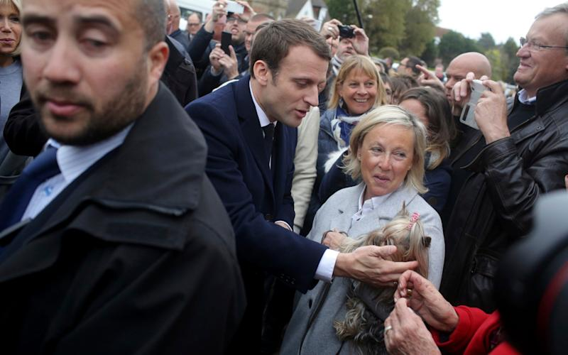 Emmanuel Macron strokes a dog after casting his ballot - Credit: Thibault Camus/ AP