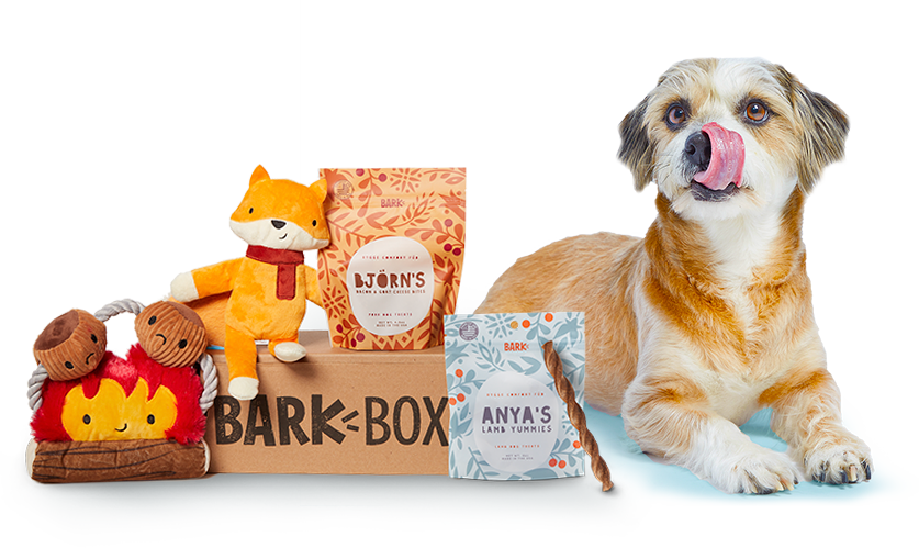 """Obsessed with your dog? Then this box will be a treat for you and your four-legged best friend. Each box comes filled with two toys, two bags of all natural treats, and a dental chew. You can tailor the box based on the dog's size and dietary restrictions, and the price of the box goes down with longer subscriptions. $35, BarkBox. <a href=""""https://www.barkbox.com/subscribe/"""" rel=""""nofollow noopener"""" target=""""_blank"""" data-ylk=""""slk:Get it now!"""" class=""""link rapid-noclick-resp"""">Get it now!</a>"""