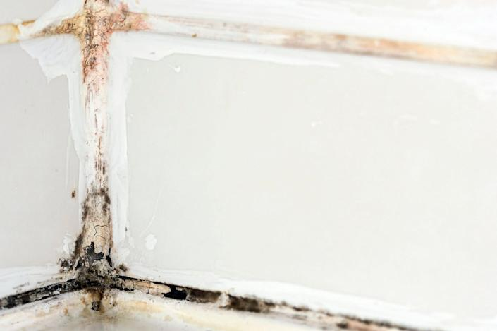 Combat mould and mildew on tiles and shower curtains with a paste of equal parts lemon juice and baking powder. Leave for 2 hours then rinse off with warm water.