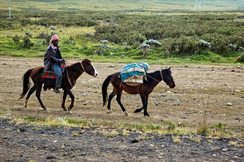 Local indigenous people, on horseback, on their way to the local market. Bale Mountains (Alamy Stock Photo)