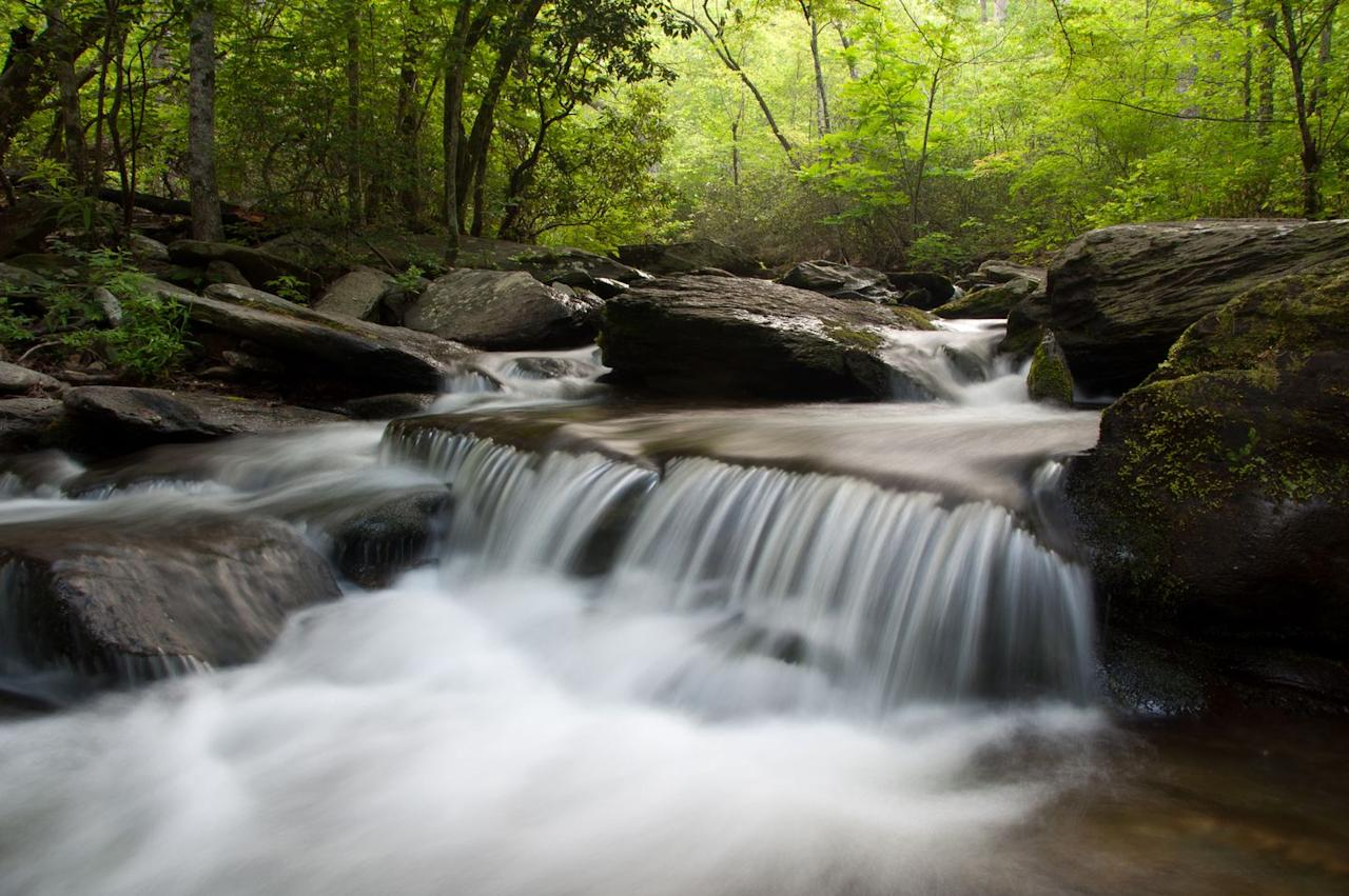 """<p>At 2,407 feet above sea level, Cheaha State Park is the <a href=""""https://www.al.com/living/2017/06/alabamas_most_beautiful_places.html"""" target=""""_blank"""">highest point</a> in Alabama. Observe the changing of the seasons from above and admire the waterfalls that provide a tranquil soundtrack for the trails.</p>"""