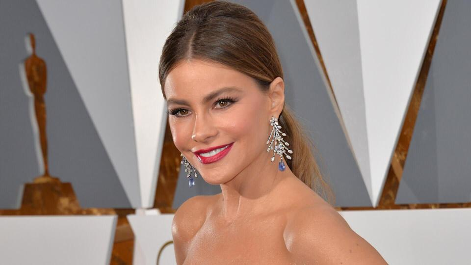 "<p>Discovered by a photographer in her home country of Colombia, Sofia Vergara gave up a career in dentistry to become a runway model at age 23. Her first job was hosting a travel show called ""Fuera de Serie,"" which exposed her to an American audience.</p> <p>Her big break came in 2009 on the hit series ""Modern Family,"" for which she received four Emmy nominations. Vergara's net worth is likely in part due to the show boasting one of the highest-paid casts of all time. When the series ended after its 11th season in 2020, she was earning $500,000 per episode.</p>"