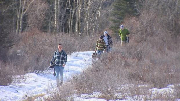 Hikers make their way down a path in Crown lands, west of Calgary. Some groups are urging campers to respect the land and remain safe as they seek to escape pandemic restrictions. (Helen Pike/CBC - image credit)
