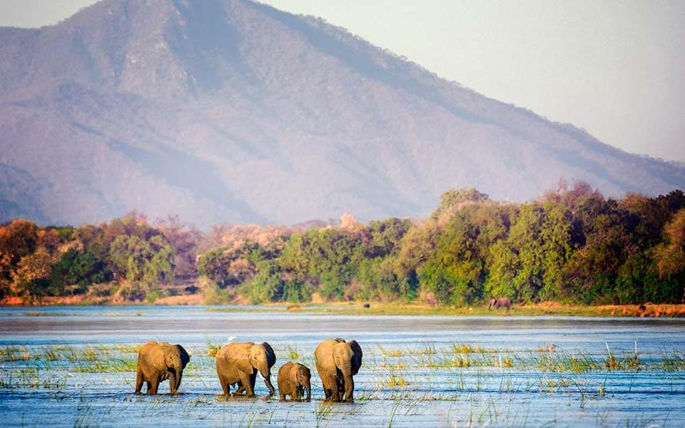 The Zambezi and its tributaries offer the chance to see wildlife from the water - GETTY