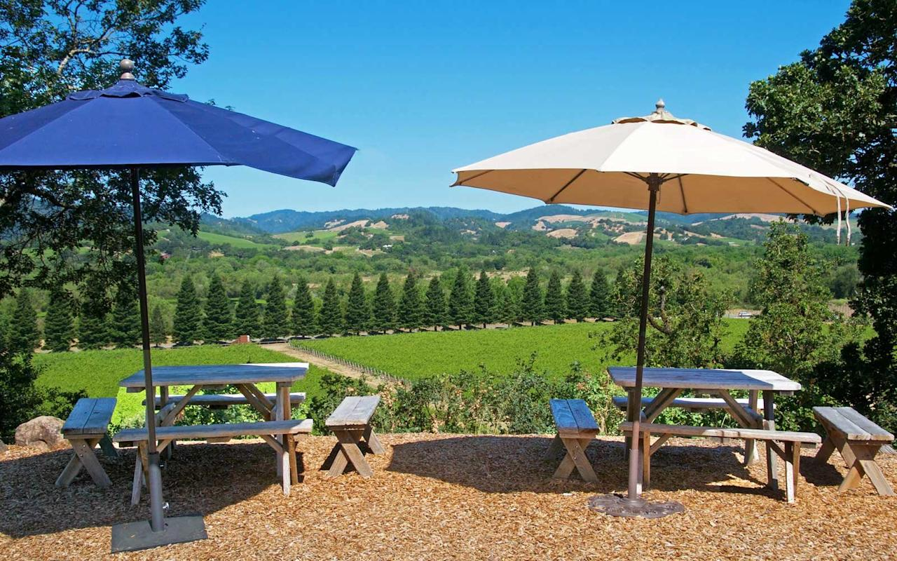 <p>The natural splendor of Copain's hilltop winery is visible the moment you start meandering up the driveway, but it's best appreciated from an Adirondack chair overlooking the serene Russian River Valley below.</p>