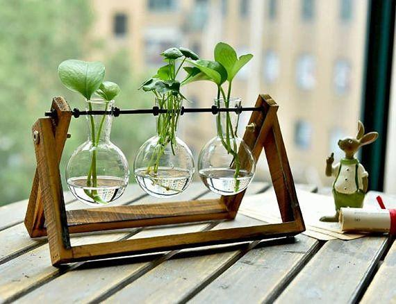 """Get it <a href=""""https://www.etsy.com/listing/536457512/simple-glass-vase-set-water-plant-vase?ref=cyber_subcategory"""" target=""""_blank"""">here</a>."""