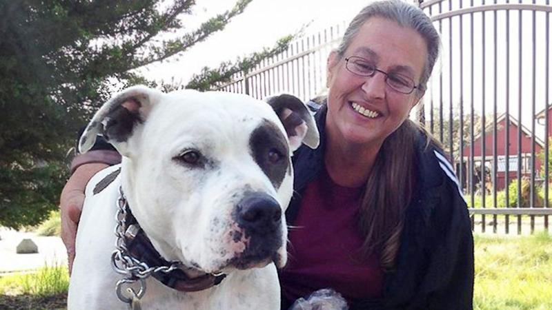 Homeless Family Who Held on to Pit Bull Has New Home