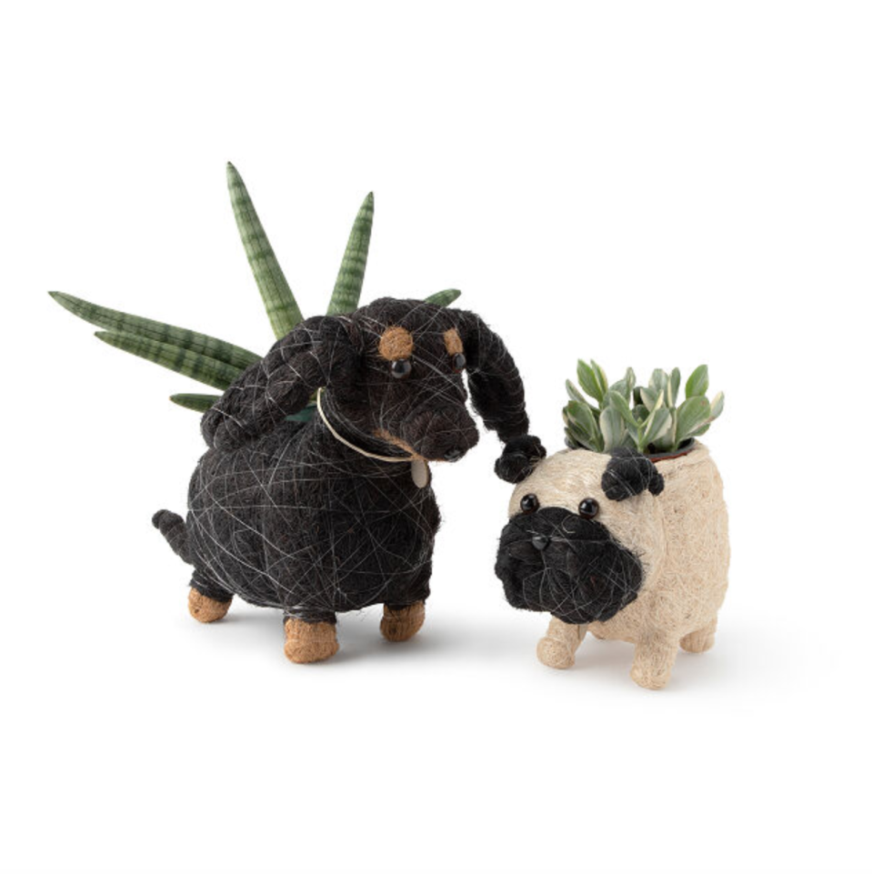 Coconut Fiber Dog Planter (Photo via Uncommon Goods)