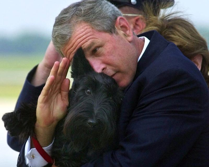 FILE - In this June 25, 2001 file photo, President Bush does his best to salute while holding his dog Barney as they get off of Air Force One at Andrews Air Force Base, Md. Barney, former White House Scottish Terrier and star of holiday videos shot during President George W. Bush's administration, has died after suffering from cancer, the former president announced in a statement Friday, Feb. 1, 2013. He was 12.  (AP Photo/Susan Walsh, File)