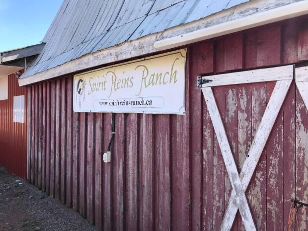 Spirit Reins Ranch has been operating for more than a decade.