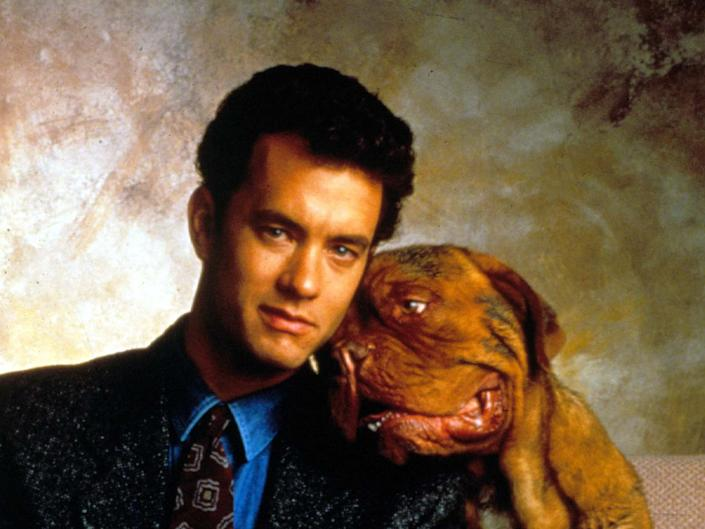 <p>'Turner and Hooch' is being made into a TV show</p>Rex Features