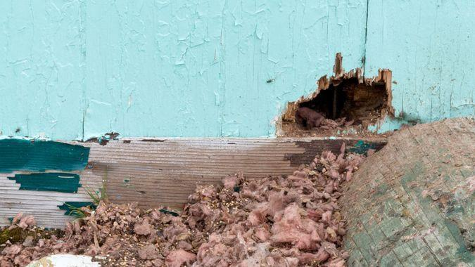 exterior hole in the side of a house