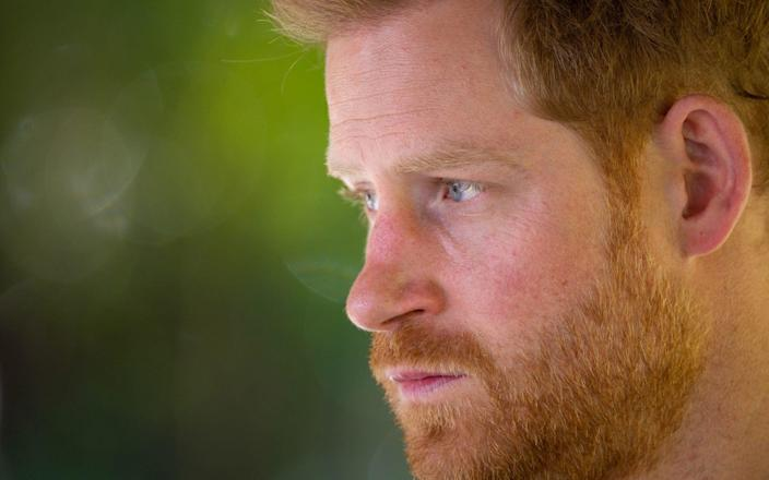The Duke of Sussex - GETTY IMAGES