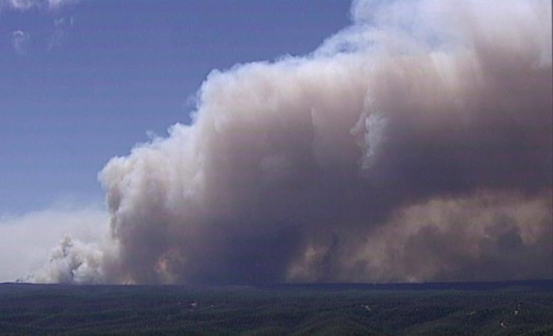Huge plumes of smoke billow from trees on fire in Gospers Mountain, New South Wales, (AP)