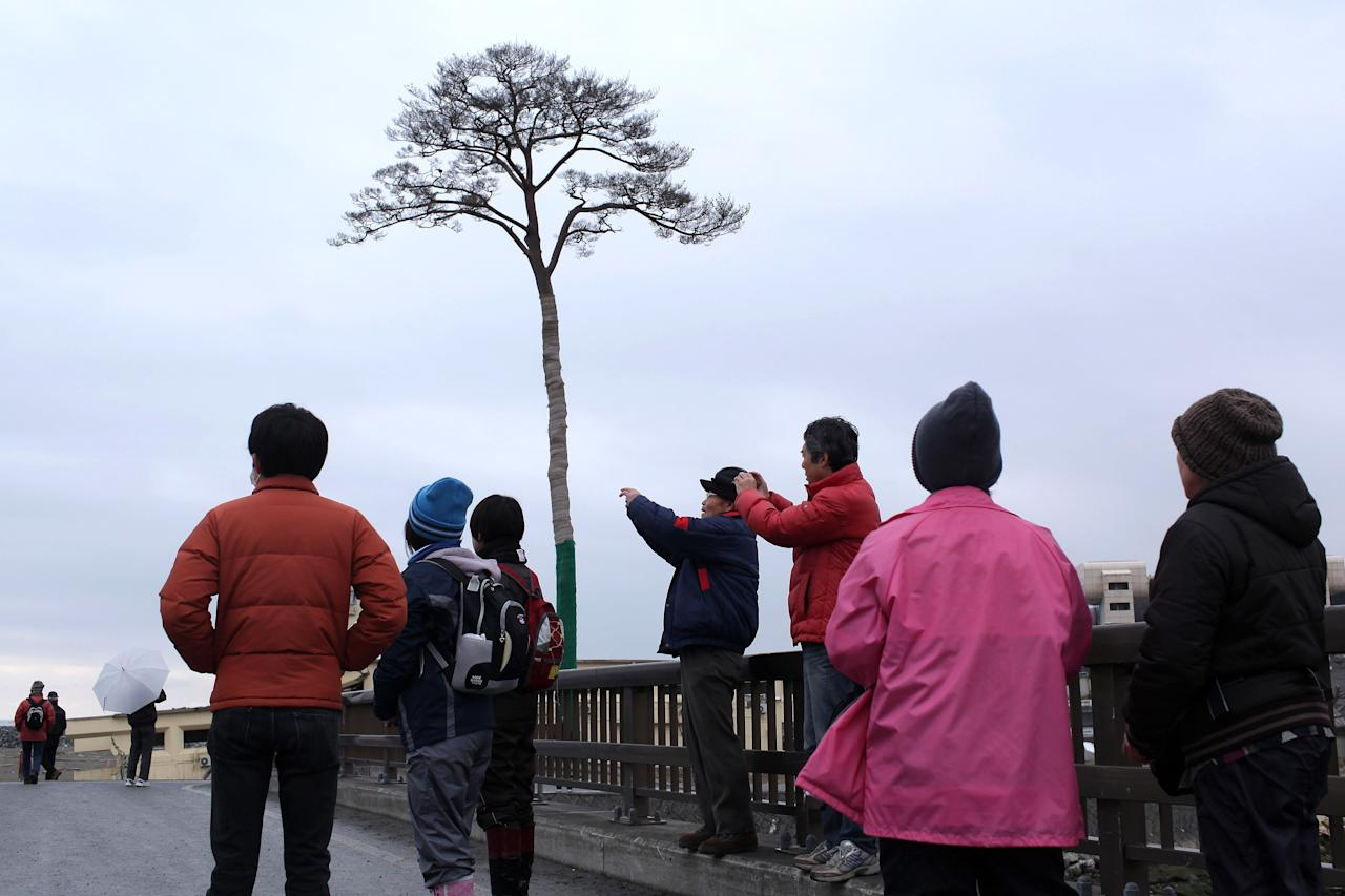 A group of volunteers from Tokyo take photographs of the single pine tree left standing after the March 11th tsunami, which swept away an entire forest in the city of Rikuzentakata on March 11, 2012 in Rikuzentakata, Japan. The tree's miraculous survival is seen by the community as a symbol of hope and want to preserve it as a living monument. On the one year anniversary, the areas most affected by last year's March 11, 2011 earthquake and subsequent tsunami that left 15,848 dead and 3,305 missing according to Japan's National Police Agency, continue to struggle. Thousands of people still remain without homes living in temporary dwellings. The Japanese government faces an uphill battle with the need to dispose of rubble as it works to rebuild economies and livelihoods. Across the country people are taking part in ceremonies to pay respects to the people who lost their lives.  (Photo by Chris McGrath/Getty Images)