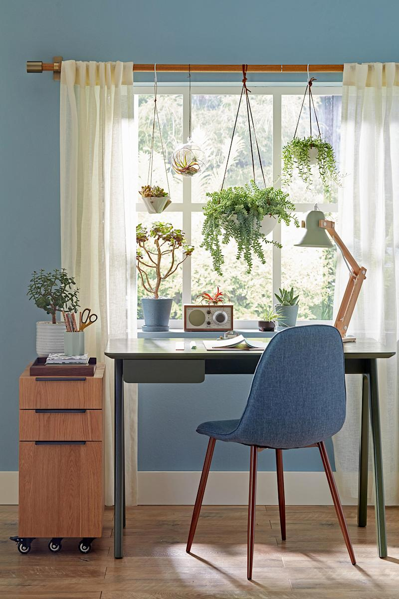 blue desk chair by window with plants