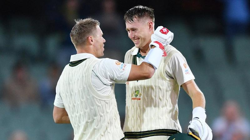 David Warner and Marnus Labuschagne tormented Pakistan with tons at the Adelaide Oval