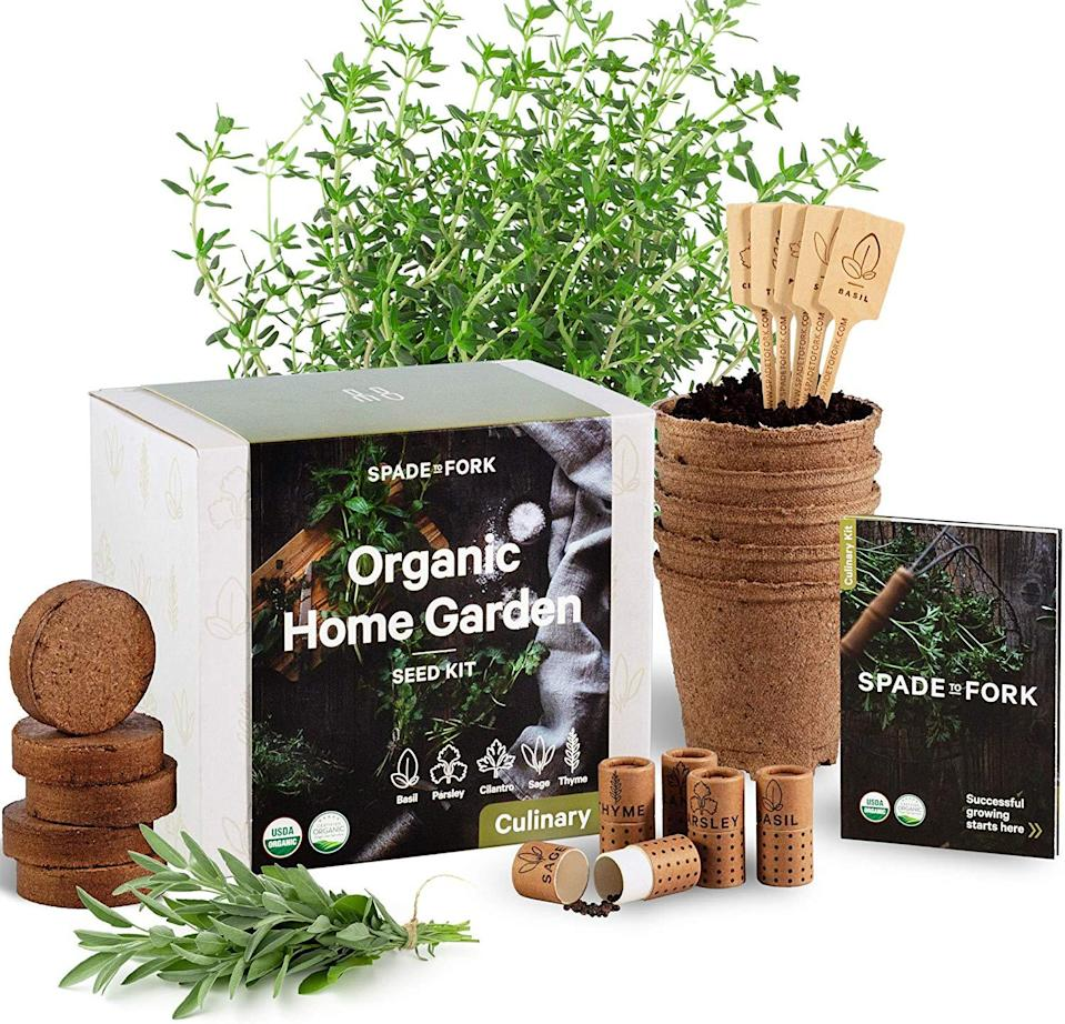 """Who doesn't love a gift thats also sort of a job? Still, this planting set is the gift that keeps on giving. <br><br><strong>Amazon</strong> Indoor Herb Garden Starter Kit, $, available at <a href=""""https://www.amazon.com/Indoor-Herb-Garden-Starter-Kit/dp/B07HHMJBG2/"""" rel=""""nofollow noopener"""" target=""""_blank"""" data-ylk=""""slk:Amazon"""" class=""""link rapid-noclick-resp"""">Amazon</a>"""