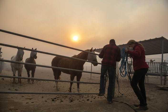 Horses are tended to under smoke from wildfires burning in the region at a ranch in Simi Valley, Calif., Oct. 30, 2019. (Photo: Christian Monterrosa/AP)