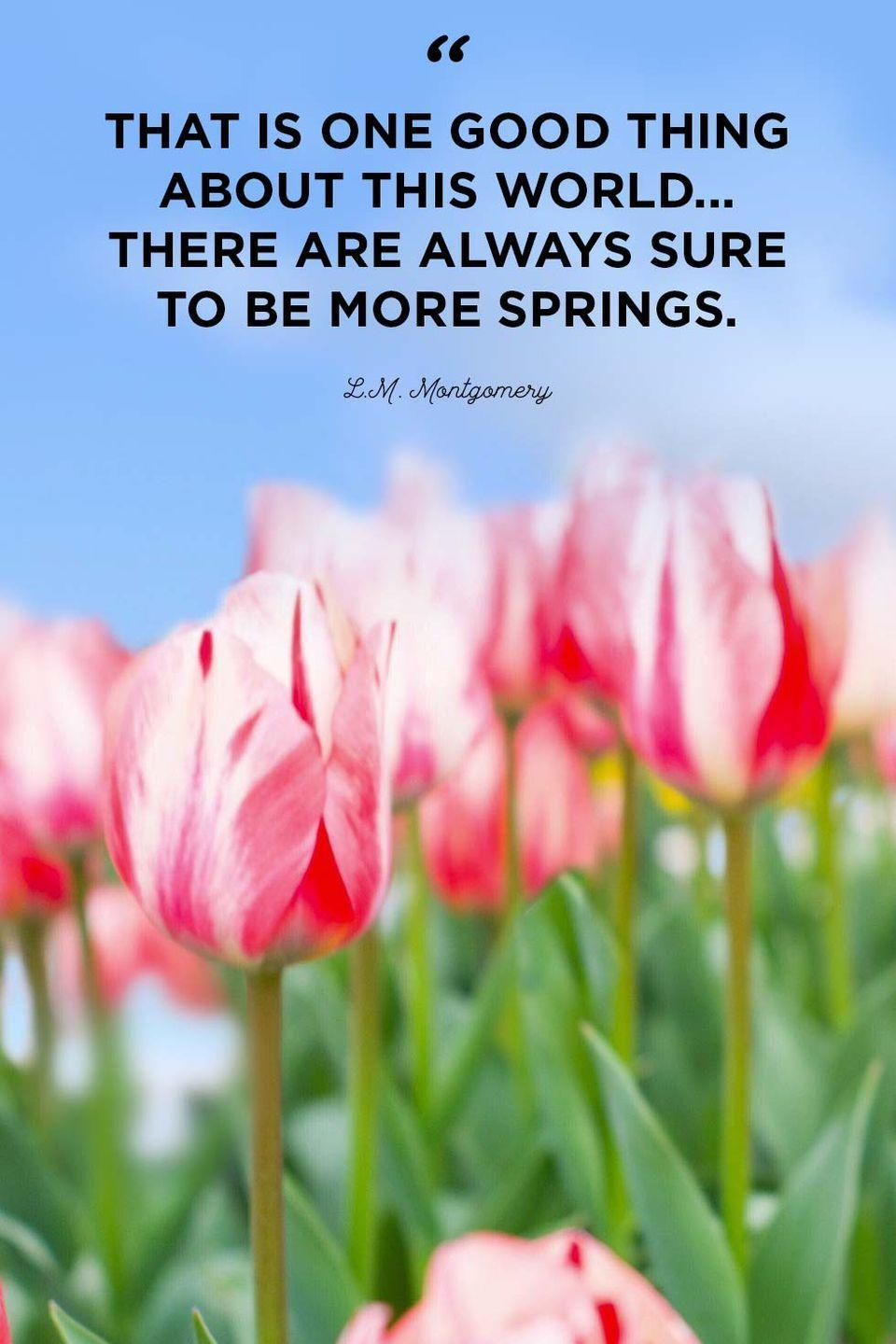 """<p>""""That is one good thing about this world...there are always sure to be more springs.""""</p>"""