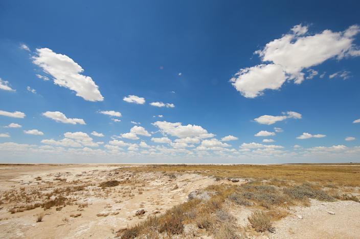 """A view of the Etosha Pan, a 75-mile-long dry lakebed. Etosha, which means """"Great White Place,"""" is composed of a large mineral pan. (Photo: Gordon Donovan/Yahoo News)"""