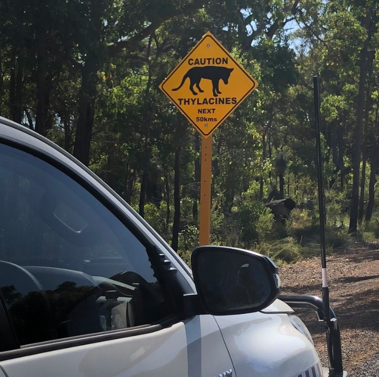 The warning sign about thylacines in the area. Source: Nannup Police