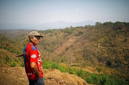 Juan Orlando Cruz watches at the land, that used to be coffee plantations and where he used to work, in Berlin