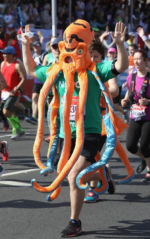 fun runner squid - Credit: GETTY IMAGES