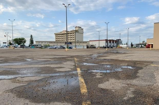 Edmonton police were called to the parking lot of a hotel located near Calgary Trail and 53rd Avenue.  (Dave Bajer/CBC News - image credit)