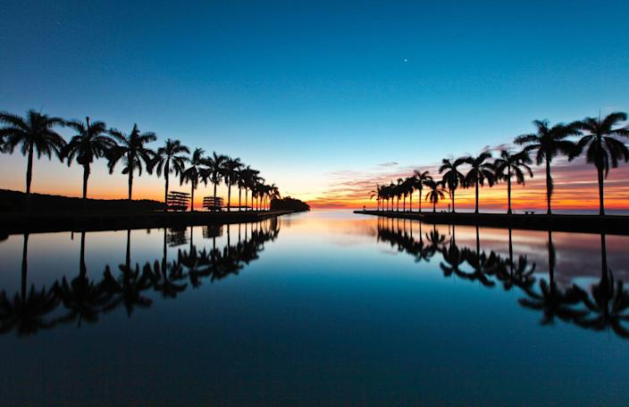 <p>Florida is known for it's amazing sunsets, but as this pic of the palm trees in Miami show, it also has some pretty outstanding sunrises as well. </p>