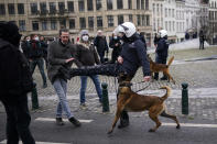 A police officer kicks a protesterduring an unauthorised demonstration against COVID-19 restrictive measures in Brussels, Sunday, Jan. 31, 2021. According to Belgian media around 200 people have been arrested for trying to join a protest against restrictive measures implemented in the country in order to fight the virus, such as a 10pm curfew or the closing of bars and restaurants. (AP Photo/Francisco Seco)