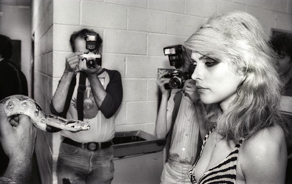 <p>Debbie Harry meets a snake before a Philadelphia concert in 1978.</p>