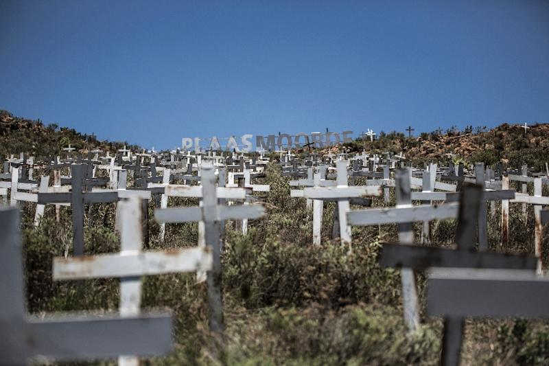 Crosses are planted on a hillside at the White Cross Monument, each one marking a white farmer killed in a farm murder in Ysterberg