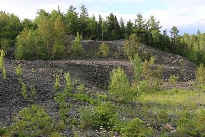 Image 1. Muckpile material at Keeley mine. (CNW Group/First Cobalt Corp.)