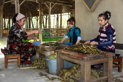 At Zarif Mukhtarov's paper mill in the village of Koni Ghil, outside Samarkand, paper comes from the branches of young mulberry trees that are indigenous to Uzbekistan