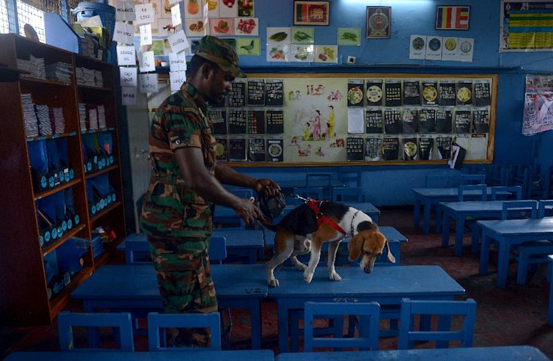 Sri Lanka has imposed a state of emergency since April 21 and given wide powers to troops and police (AFP Photo/ISHARA S.  KODIKARA)