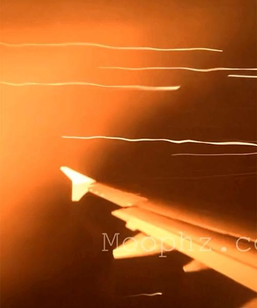 Flames shoot from plane engine during bird strike