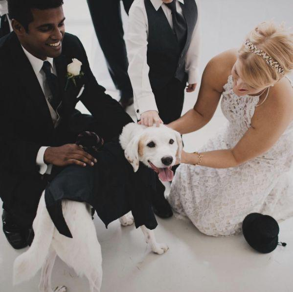 &quot;Pups are welcome at any wedding I shoot!&quot; --&amp;nbsp;<i>Anda Marie</i>