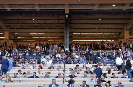 Nov 4, 2017; Del Mar, CA, USA; A general view of the grand stands during the 34th Breeders Cup world championships at Del Mar Thoroughbred Club. Mandatory Credit: Jake Roth-USA TODAY Sports