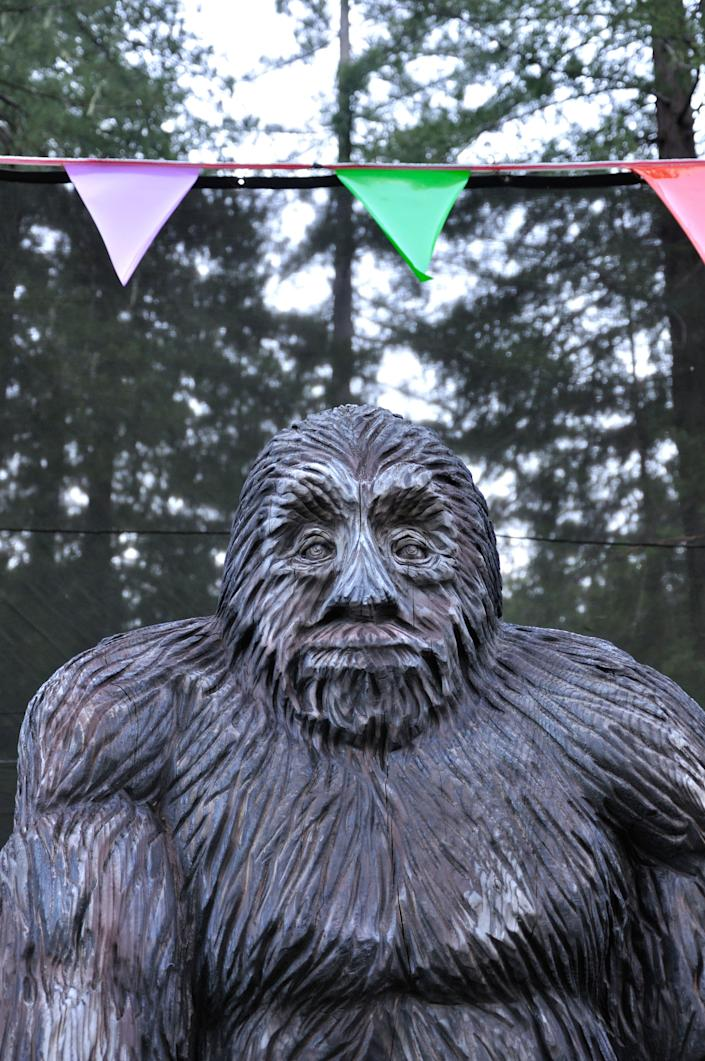 California not only boasts 428 Bigfoot sightings, but two different Bigfoot museums.